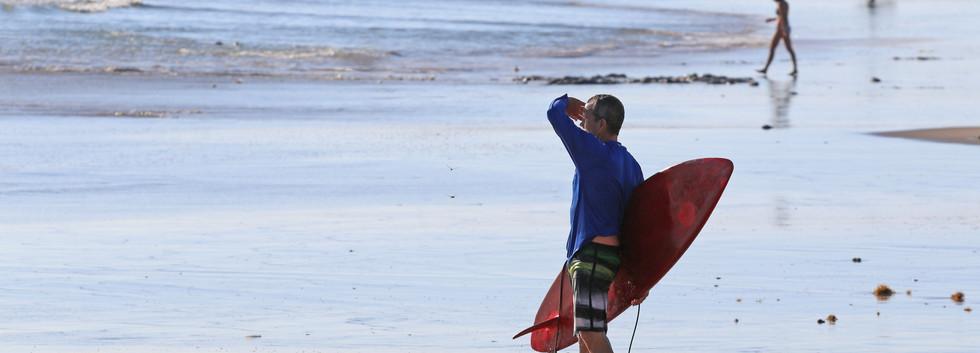 surfingibp.jpg
