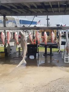 2018 Summer Fishing