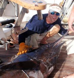 From South Padre Island big billfish