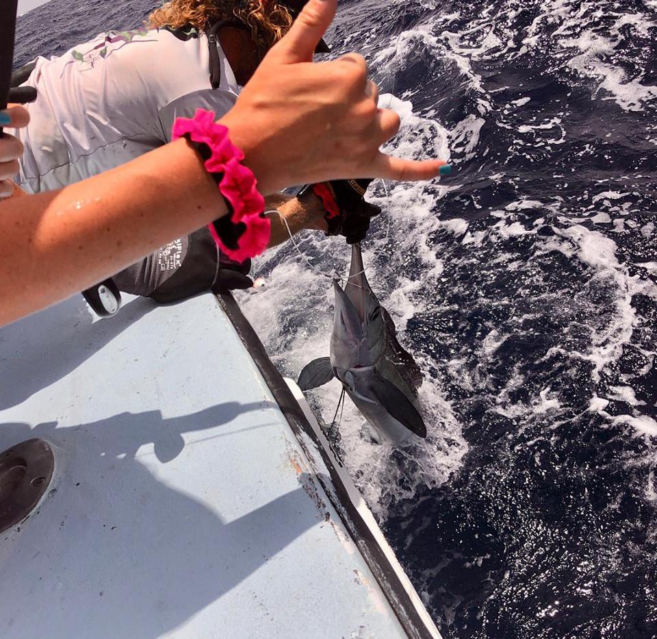Salt Walker deep sea fishing