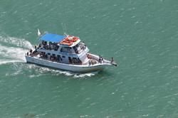 Capt. Murphy's  Isla tours