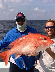 redsnapper1.jpg