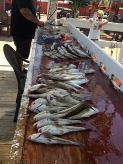 Danny B Fishing