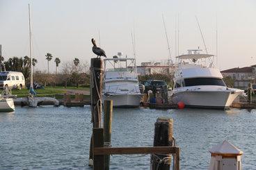 Sea Ranch Marina South Padre Island, TX.