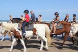 Horseback Rides on the Beach