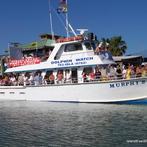 Activities near Port Isla Inn