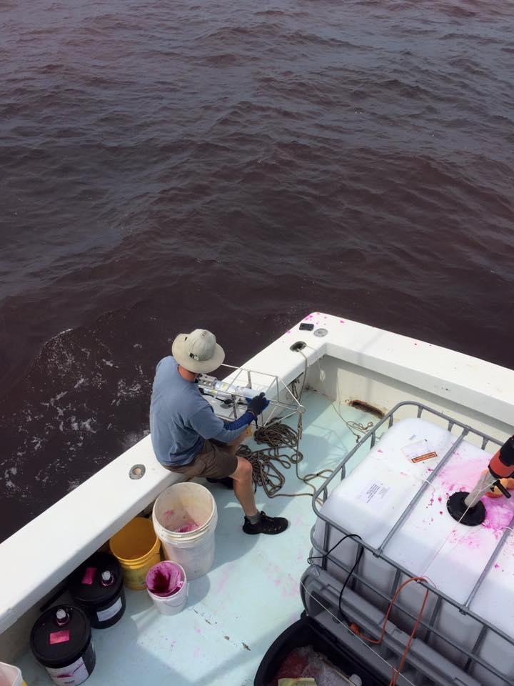 Salt Walker Offshore trips