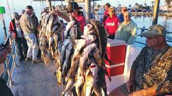 Bay Fishing Trip book your charter