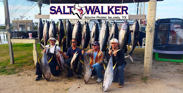 Yellow Fin Tuna, Marlin, Snapper fishing, tarpon and all the best touraments too