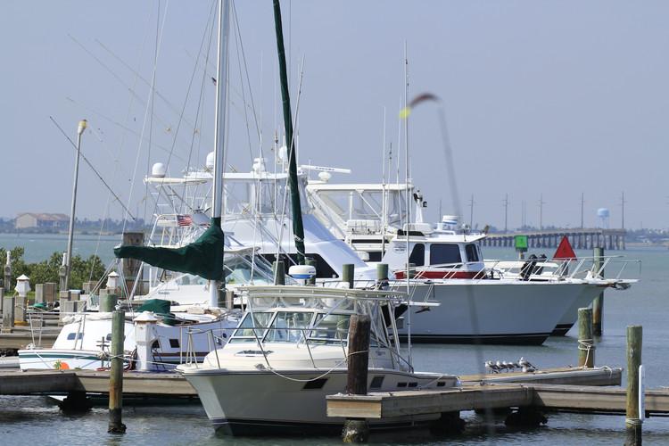 Salt Walker Fishing Charter Services