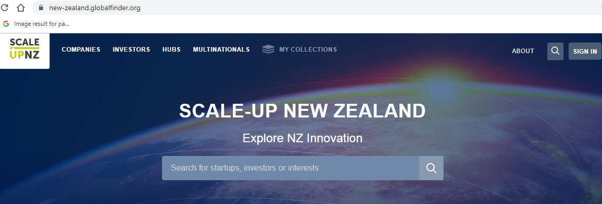 NZ GLOBALFINDER SCALE-UP PIC.jpg