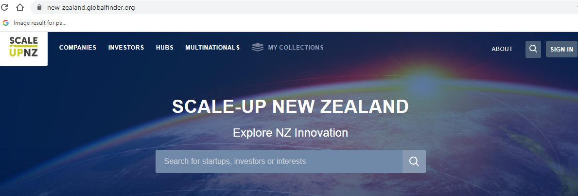 NZ GLOBALFINDER SCALE-UP PIC.jpg