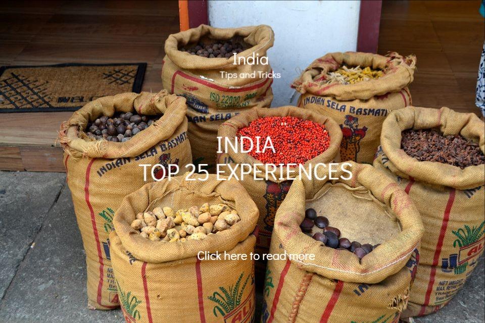 India things to do flashpacker blog