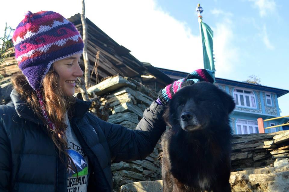 Nepal Mountain Dog