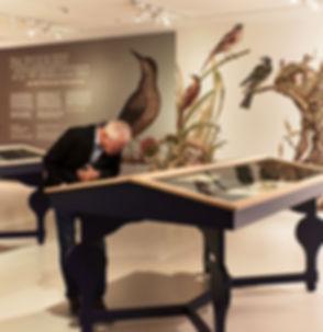 Van Riet Ontwerpers, Noordbrabants Musem, Paieren Juweeltjes, Brabant collectie