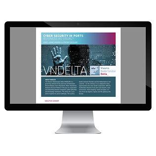 Van Riet Ontwerpers, Cyber security, VNDELTA, onwerp informatepakket