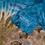 """Thumbnail: camiseta vintage Tie dye """"Costa Rica"""""""