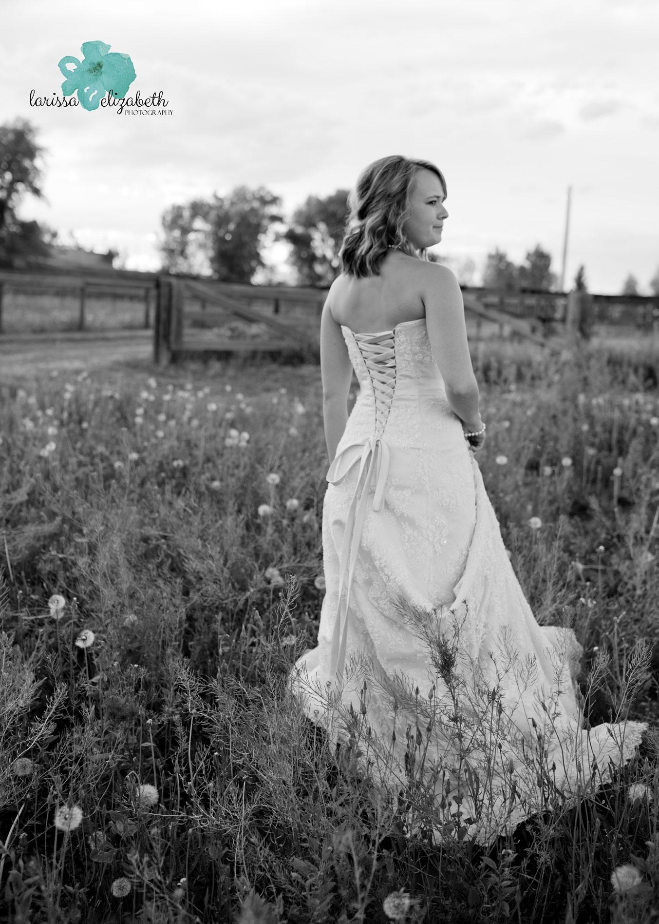 Colorado-Country-Bride-3.jpg