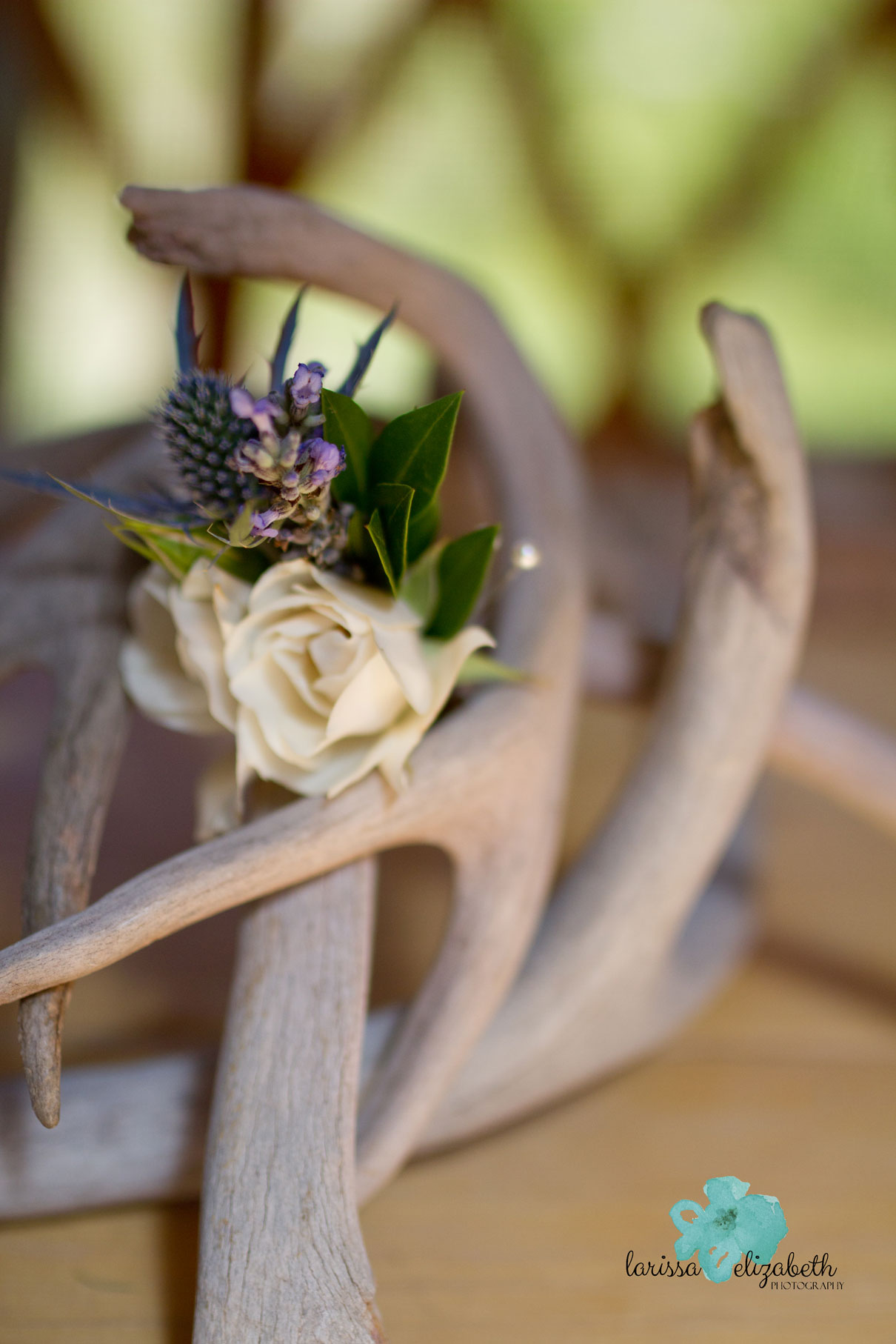 Rustic-Colorado-Wedding-1