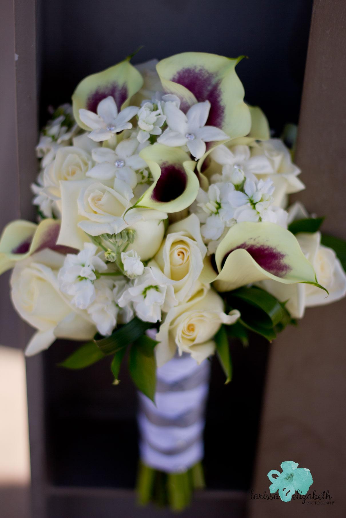 Loveland-Country-Wedding-1