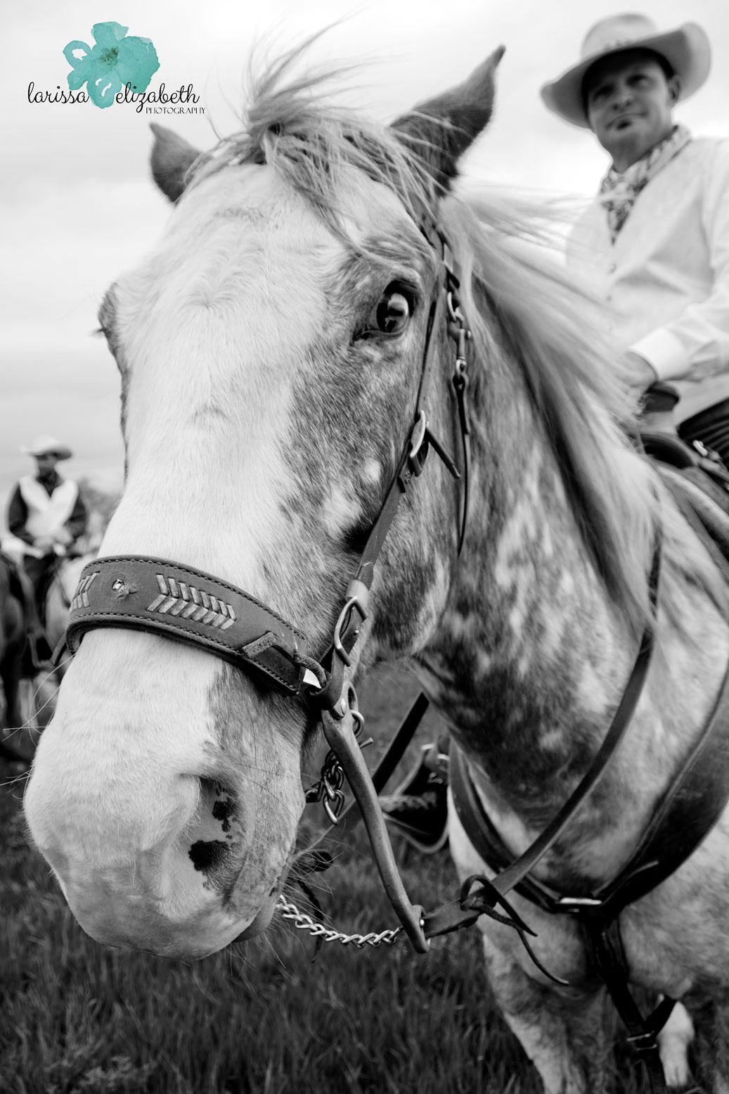 Colorado-Cowboy-Wedding-21.jpg