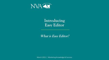 Introducing Easy Editor