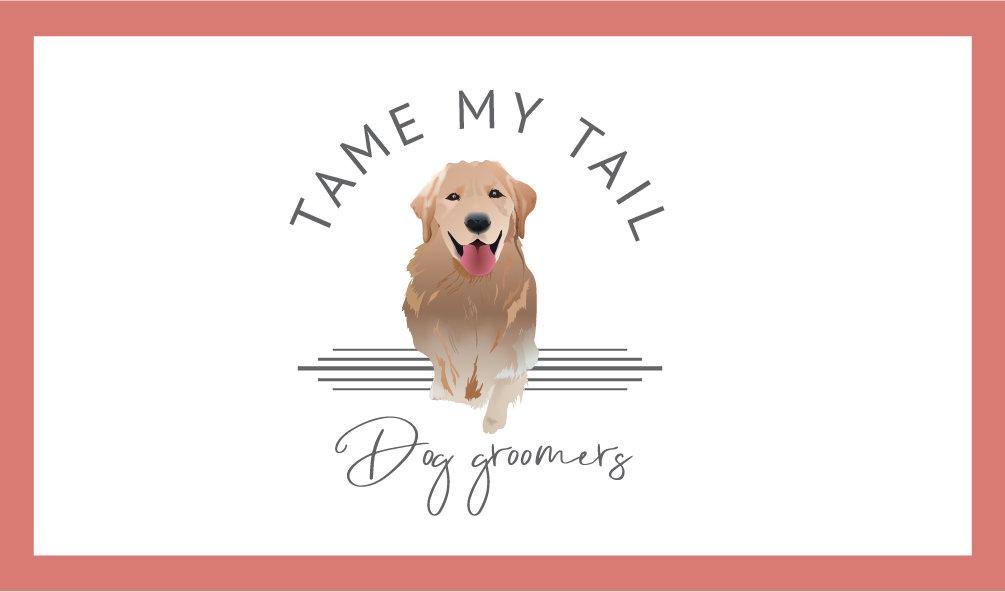 tame my tail blog header-01.jpg