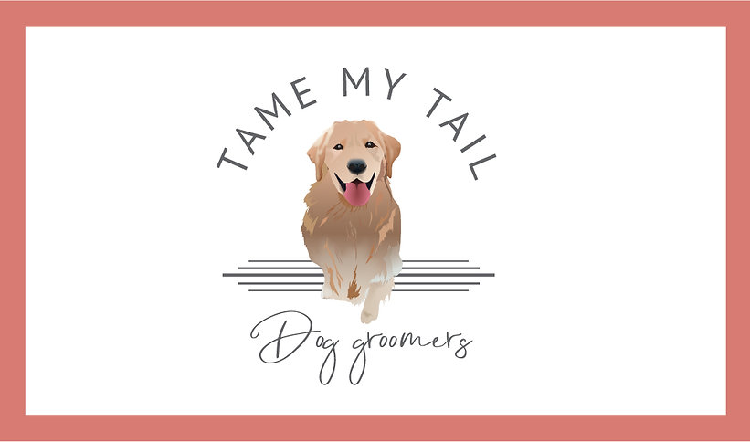 tame my tail blog header-01.jpg