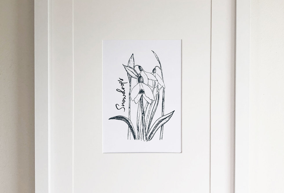 Snowdrops illustration print  - Crisp
