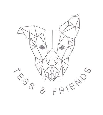 Tess and friends logo.jpg