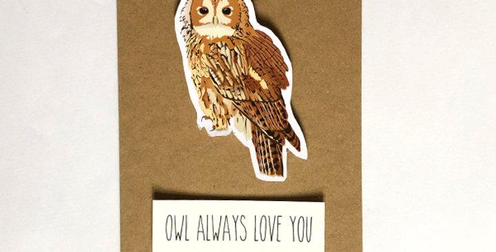 Tawny Owl greeting card, 'Owl always love you'