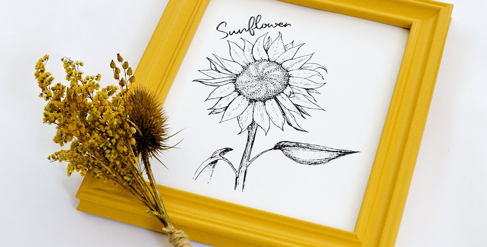 Sunflower Illustration print