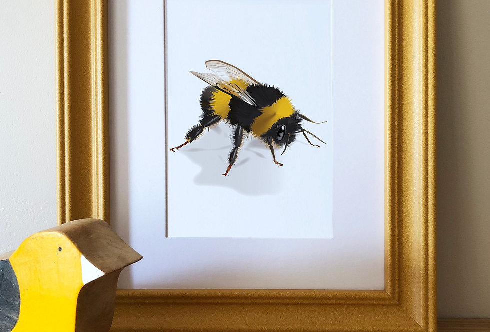 Colour pop framed Bee Print