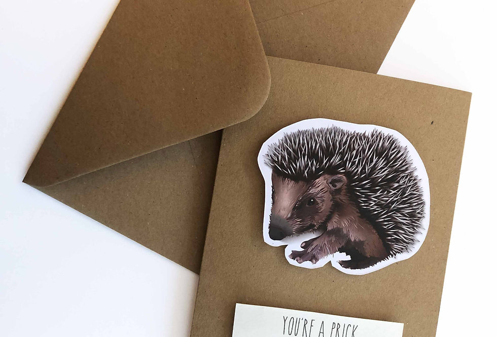 Hedgehog Valentine's card- 'You're a prick, but you're my prick'