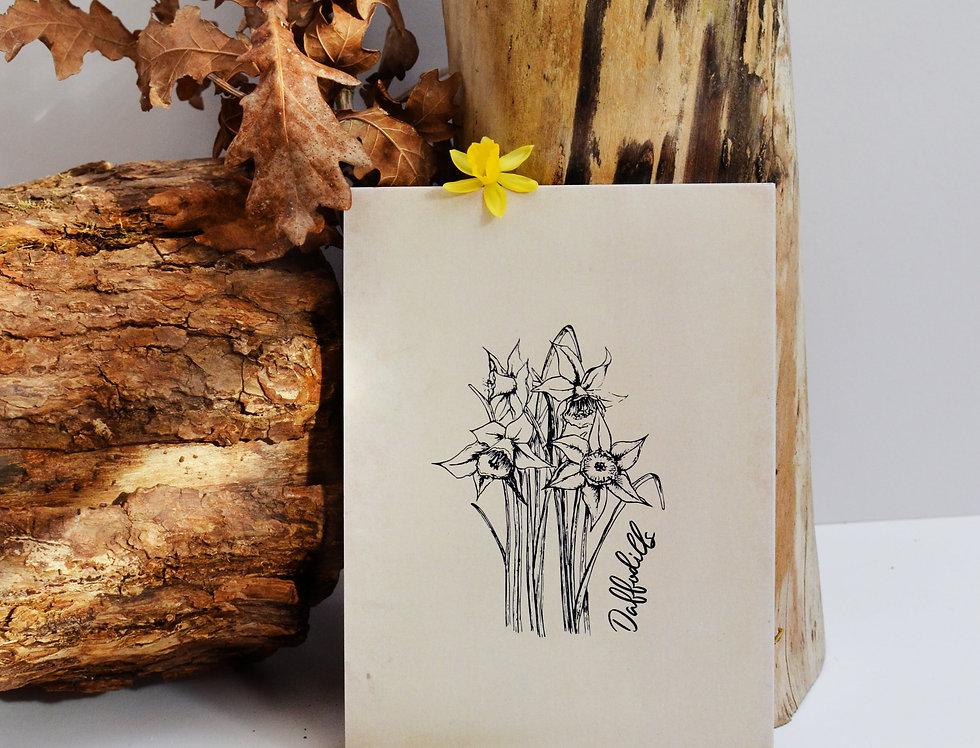 Daffodils illustration print  - Nostalgia