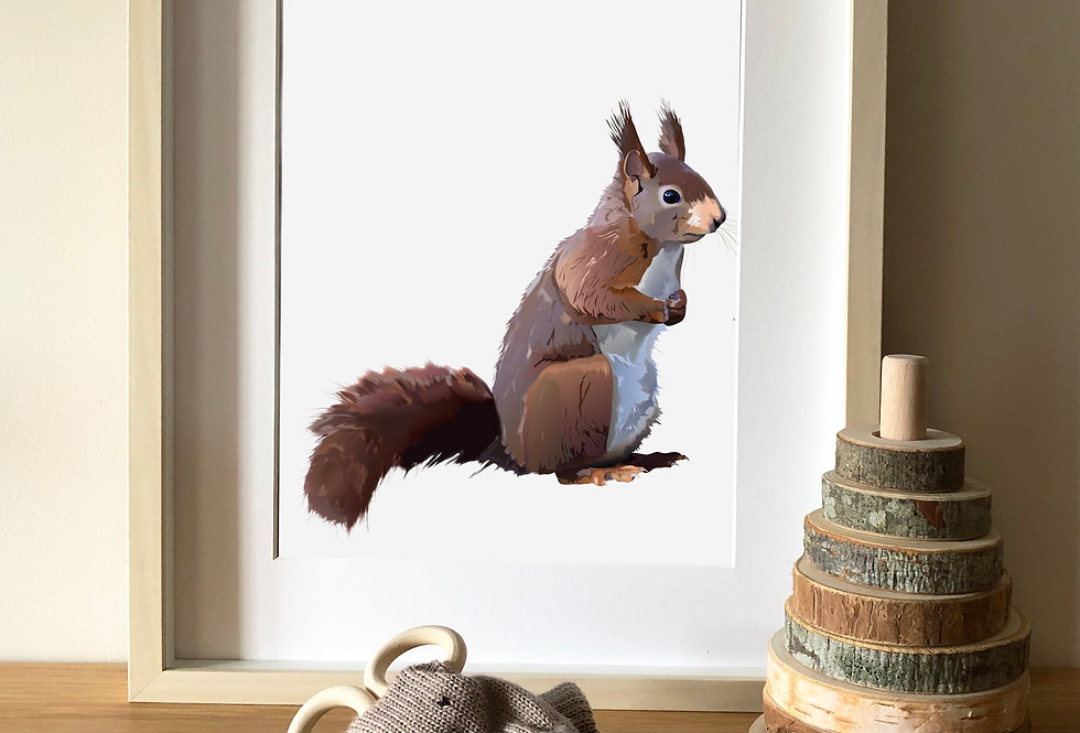 Red Squirrel Illustration print