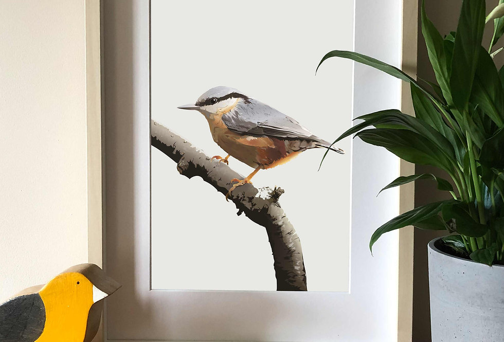 Nuthatch illustration print