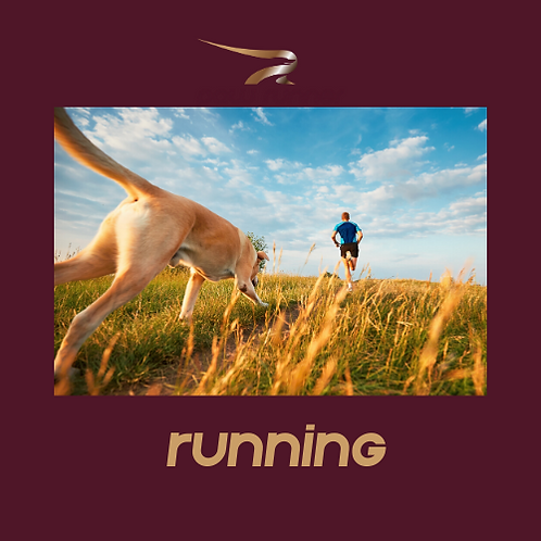 March Run - 125 miles