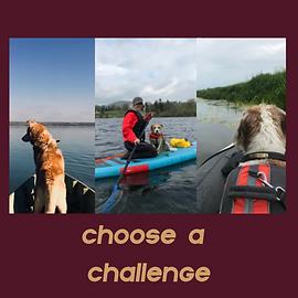 CHOOSE A PADDLER CHALLENGE.png