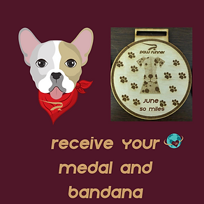 FB ad_medal and bandana .png