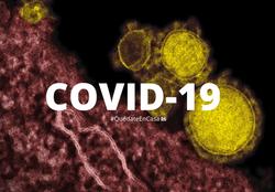 Coronavirus SARS-COV2