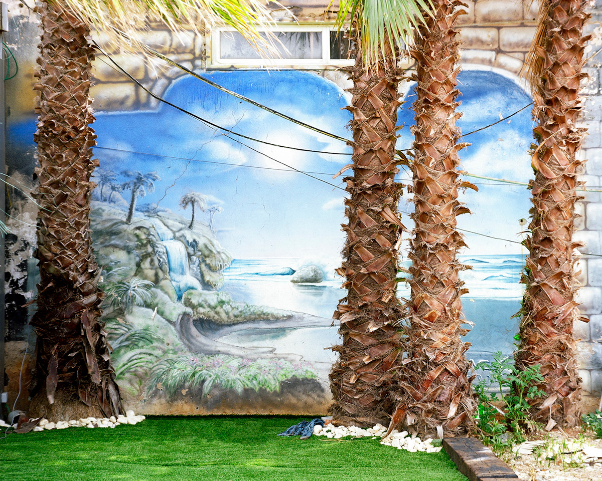 Since the people of Israel wandered in the desert, Palms clings to our nation's soul and has become a symbol of the land. In European art palm trees symbolize the orient and have been used by artist to illustrate an exotic magical world.