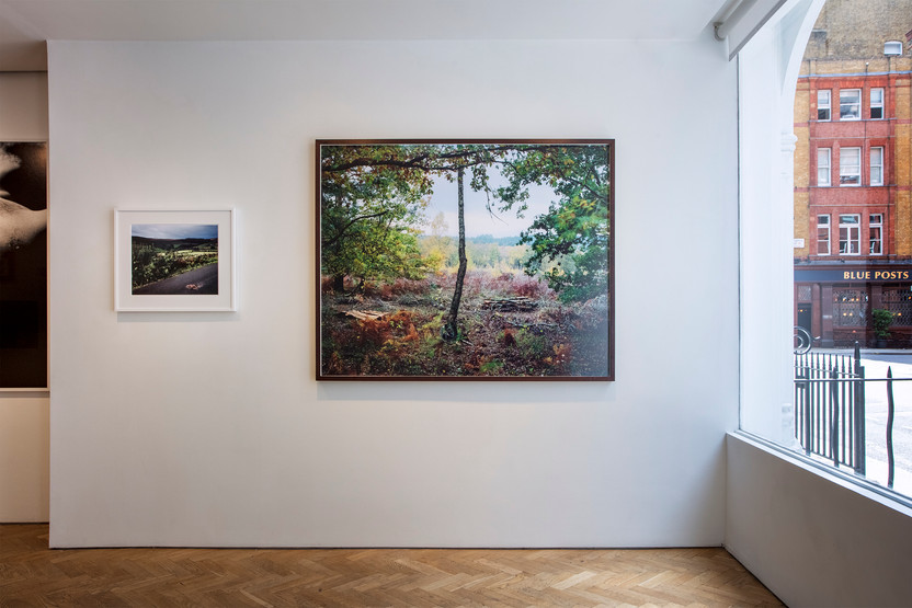 Webber Gallery (London) August 2020  Left: Spectre, 2019, 52x61cm (framed), Edition of 6 (+2AP) Right: Landscape with Oak Trees and A Hunter, 2019, 120x150cm (print size), Edition of 3 (+2AP)