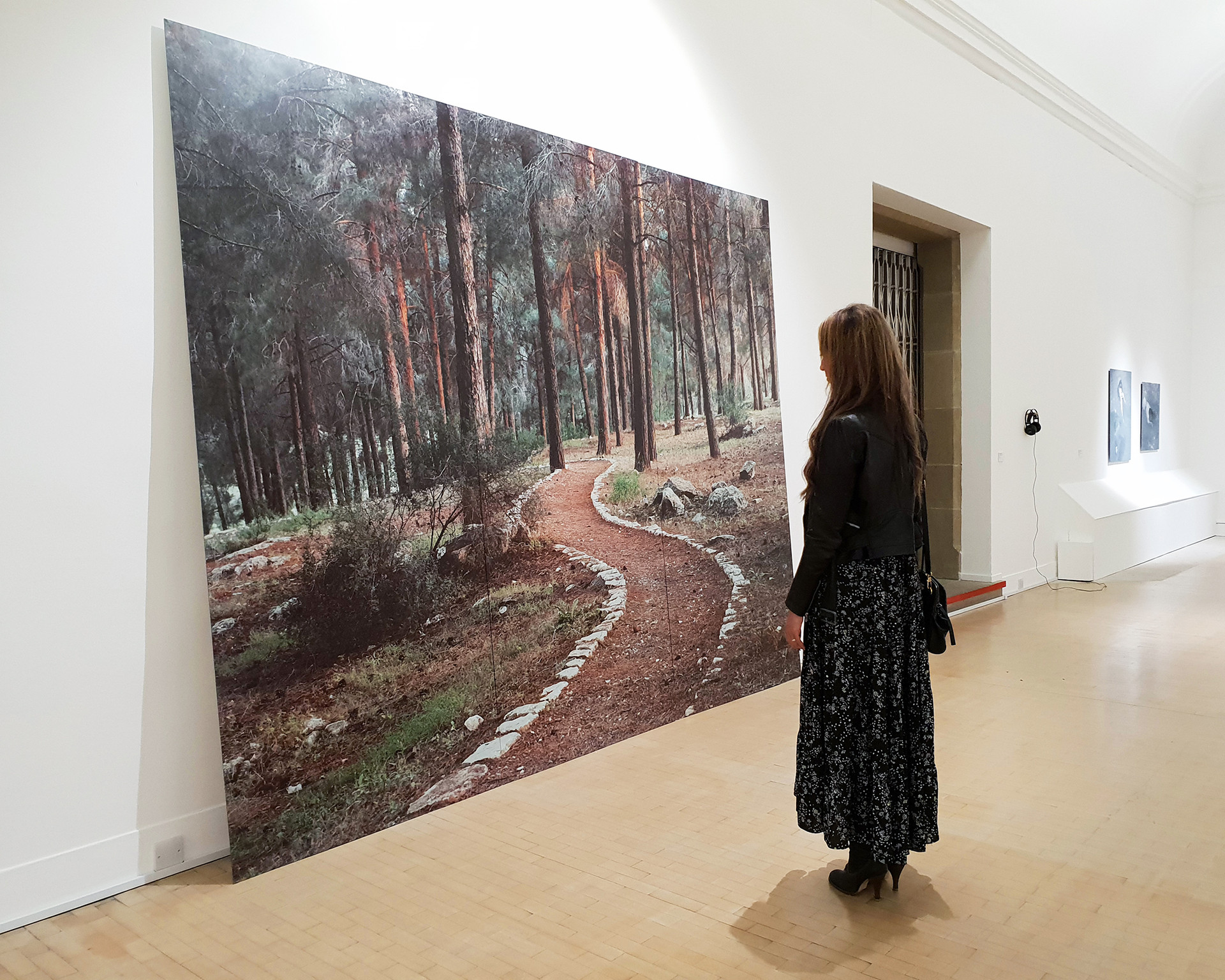 Stone Carved Trail, (installation), 2018, 264x330cm