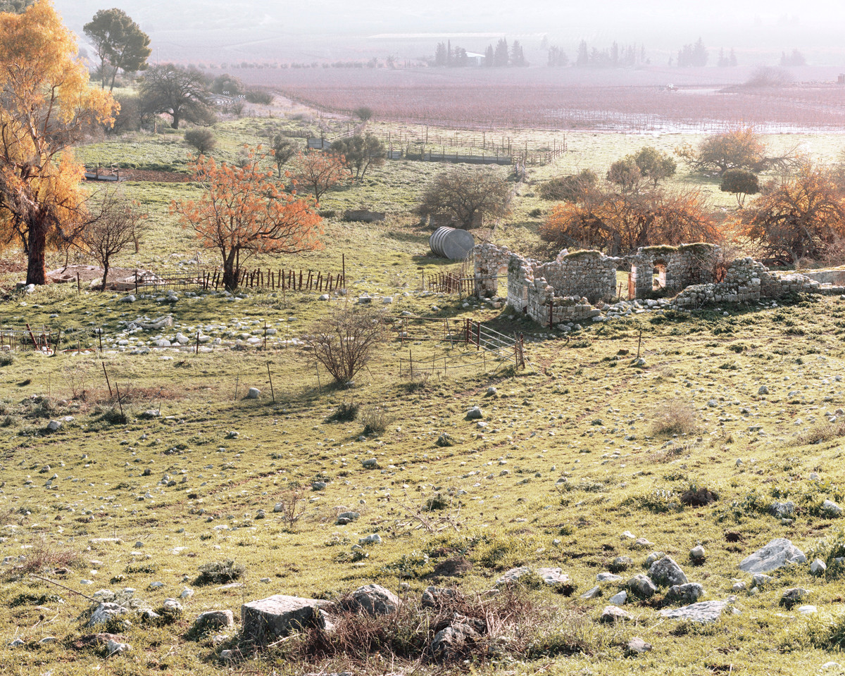 Grazing Area, The Ruins of The Arab village of Kedes (1948), 2013