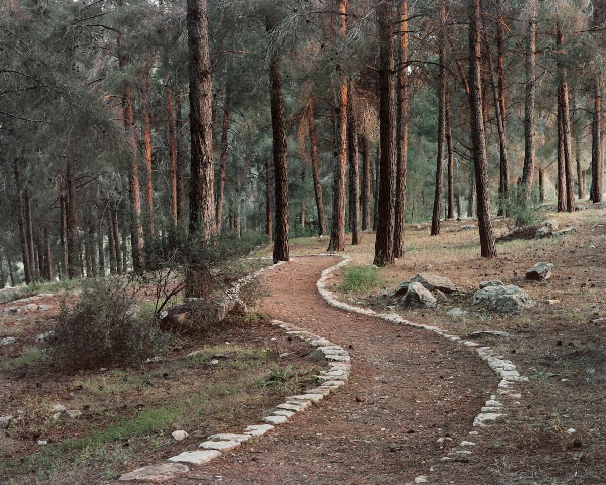 Stone Carved Trail, Ein Zeitim (Ayn al-Zaytun), Galilee, 2013