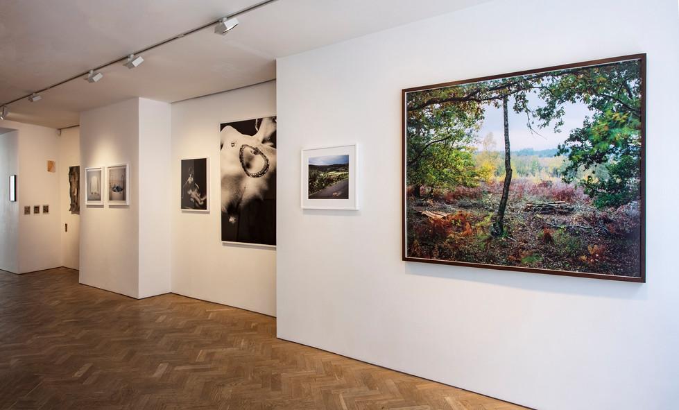 Webber Gallery (London) August 2020