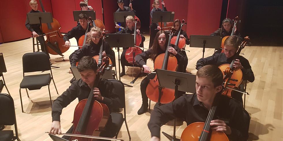 Winter Strings Concert