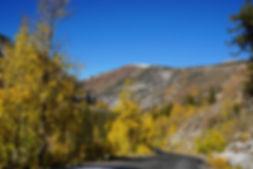 south_lake_road_10-15-19.JPG