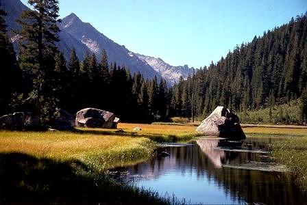 Grouse Meadows
